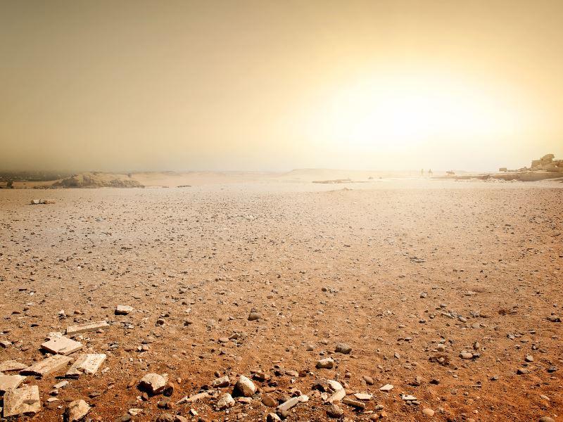 perspectief in een woestijnperiode